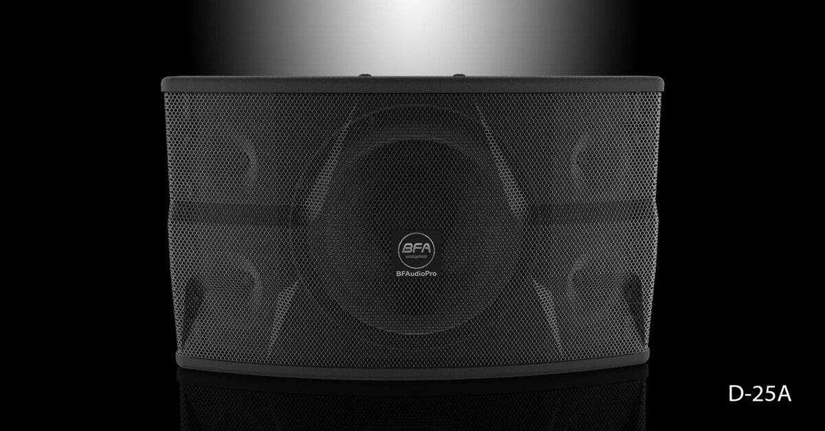 Đánh giá loa karaoke BFAudio D25A