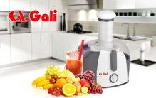 Đánh giá máy ép trái cây Gali có tốt không? 7 lý do nên mua dùng