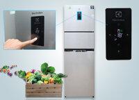 Đánh giá tủ lạnh Electrolux EME3700 có tốt không, giá bao nhiêu?