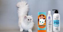 """Đây là sữa tắm cho mèo lông trắng được """"sen"""" ưa chuộng nhất"""