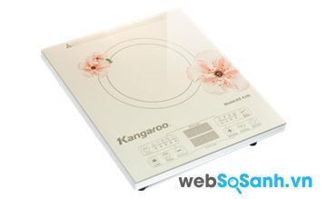 Kangaroo KG418i