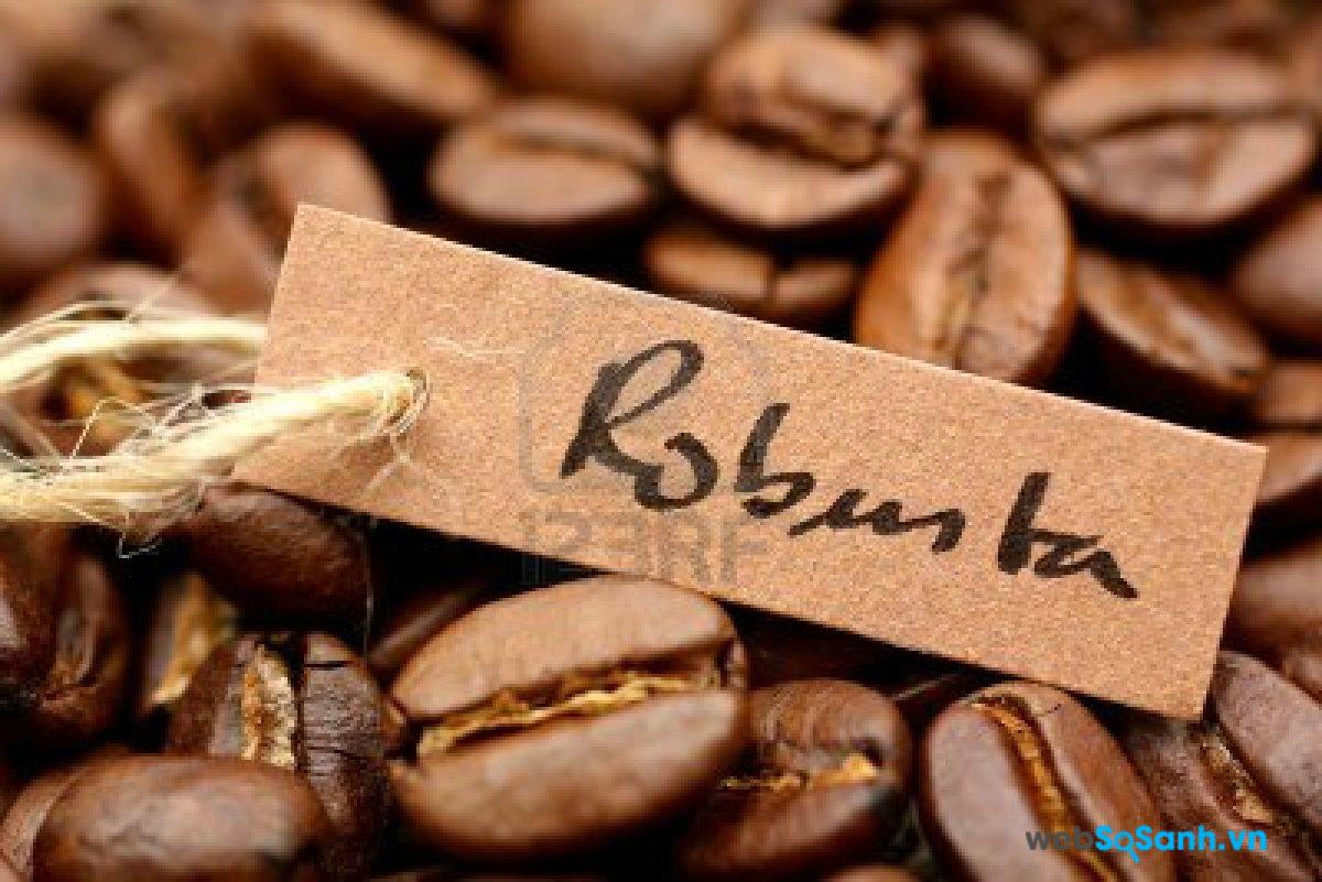 Cà phê Robusta trồng chủ yếu ở Việt Nam và có vị đắng đậm đặc hơn Arabica