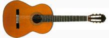 Giá đàn guitar Classic cho người mới chơi rẻ nhất bao nhiêu tiền?