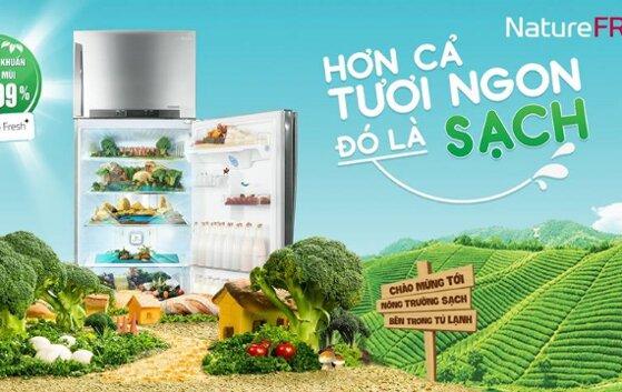 Giá tủ lạnh LG inverter 187 tới 255 lít bao nhiêu?