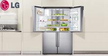 Giá tủ lạnh LG rẻ nhất tháng 10/2019