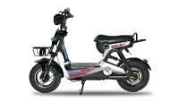 Giá xe đạp điện Anbico chính hãng rẻ nhất bao nhiêu tiền?