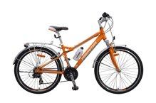 Giá xe đạp leo núi Asama bao nhiêu tiền?