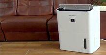 Giới thiệu máy lọc không khí bù ẩm Sharp tốt nhất hiện nay