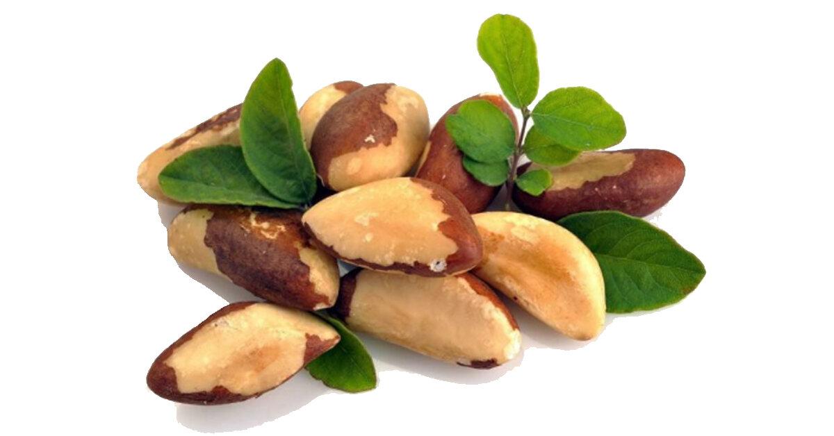 Hạt quả hạch brazil mua ở đâu ? Công dụng của hạt quả hạch