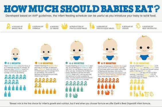 Hiểu đúng về nhu cầu sữa công thức mỗi ngày của trẻ sơ sinh