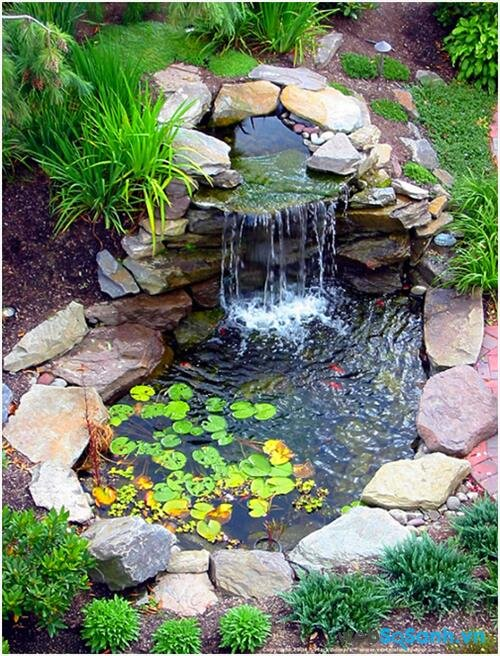 Hướng dẫn tạo hồ nước cực dễ trong khu vườn của bạn