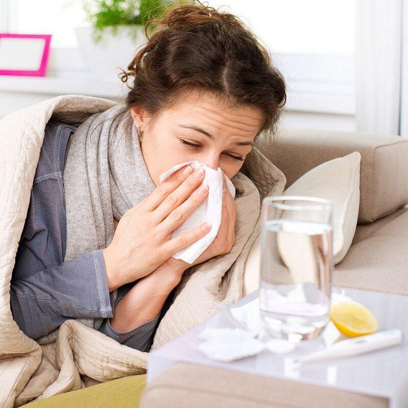 Kinh giới có vị cay, tính ấm điều trị bệnh cảm hàn cực tốt