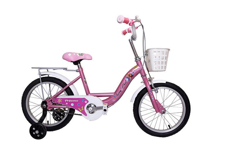 xe đạp học sinh thống nhất tiểu học