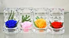 Ý nghĩa của hoa hồng bất tử – Nhân ngày 20/11 giảm đến 20% khi đặt mua 090.309.2311