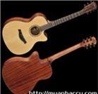 Đàn Guitar Acoustic Famosa FF420/FF20SU