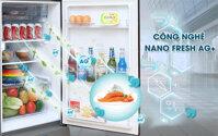 Khử mùi kháng khuẩn hiệu quả với công nghệ hiện đại trên tủ lạnh Sanyo giá rẻ