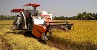 Kinh nghiệm mua máy gặt đập liên hợp cũ-mới tốt nhất để vụ lúa 2019, 2020 bội thu