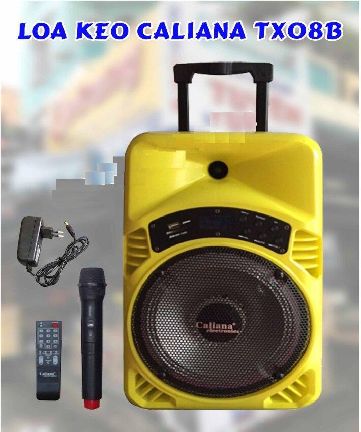 Loa Bluetooth Caliana TX08B