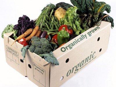 Lựa chọn thực phẩm hữu cơ: Đắt xắt ra miếng