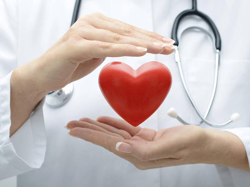 Dầu hướng dương giúp bảo vệ tim mạch