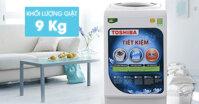 Máy giặt Toshiba 9kg AW-G1000GV WG có tốt không? Giá bao nhiêu?