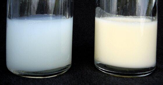Mẹ ăn gì để sữa mẹ đặc, thơm mát con tăng cân tốt