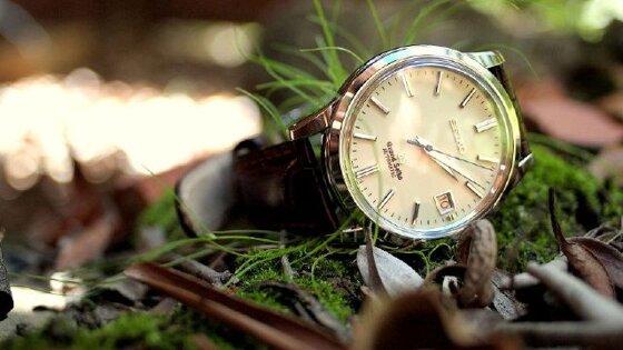 Mua đồng hồ Seiko chính hãng ở đâu tại Việt Nam
