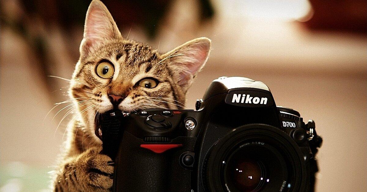 Mua máy ảnh trả góp : NÊN hay KHÔNG ?