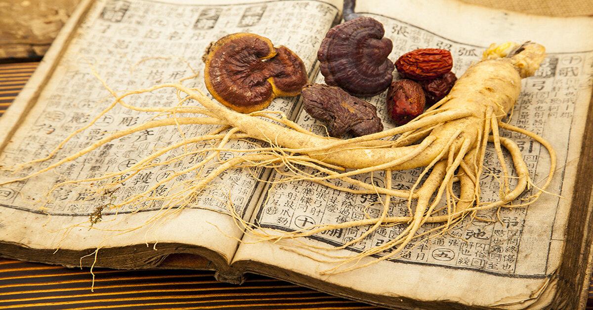 Mua sâm – nấm linh chi Hàn Quốc ở đâu uy tín tại Hà Nội
