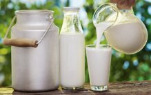 Nên cho bé uống sữa tươi loại nguyên kem hay tách béo tốt cho trí não
