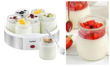 Nên chọn mua máy làm sữa chua nào mùa hè này?