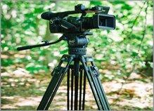 Nên mua chân máy ảnh loại nào tốt: Benro, Coman, Gizomos, Manfrotto?