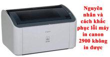 Nguyên nhân máy in Canon 2900 không in được và cách khắc phục