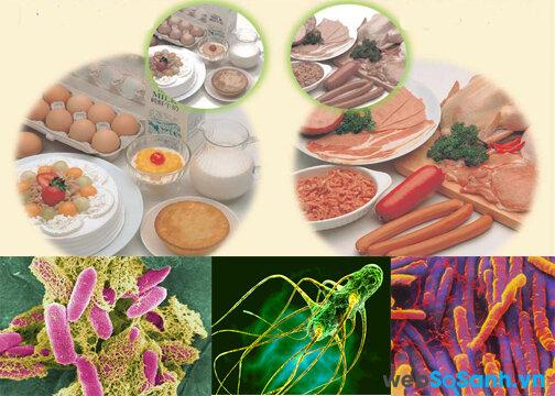 Nguyên nhân và biểu hiện của các loại ngộ độc thực phẩm