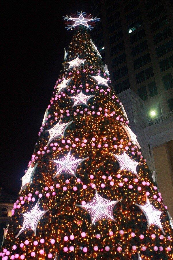 Những biểu tượng không thể thiếu trong mùa Giáng sinh