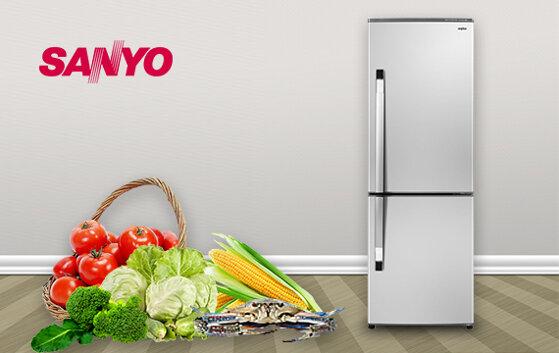 Những mẫu tủ lạnh Sanyo giá rẻ đáng mua nhất hiện nay