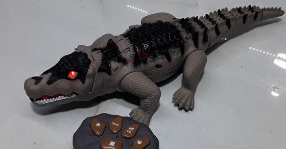Những món đồ chơi cá sấu an toàn được nhiều trẻ nhỏ yêu thích