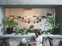 Những quán cà phê lãng mạn dành cho ngày Valentine tại Hà Nội