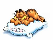 Những sự thật về giấc ngủ có thể bạn chưa biết