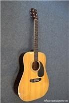 Đàn Guitar Acoustic Morris W-20