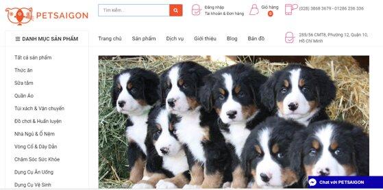 Petsaigon.vn – Chuyên cung cấp thức ăn và phụ kiện cho thú cưng