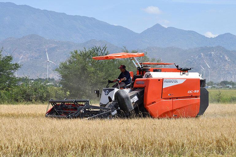 máy gặt đập liên hợp