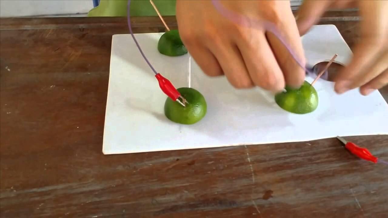 Thử nghiệm cách chế tạo pin từ hoa quả
