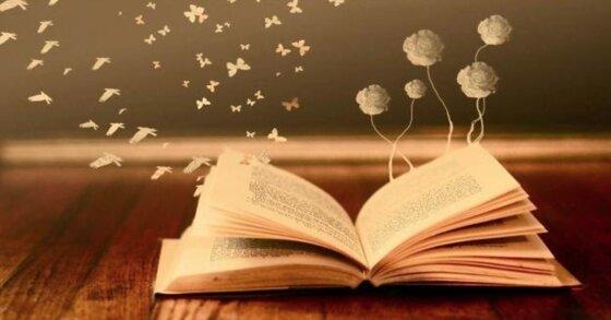Sách văn học là gì? Những dòng sách được ưa thích hiện nay