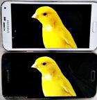 """Samsung nói """"bạn không nên hài lòng với màn hình của Galaxy S5"""""""