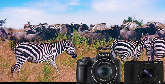 So sánh máy ảnh Sony HX50 và Canon SX50 HS