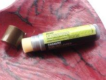 So sánh son dưỡng môi Smith's Rosebud Salve và The Body Shop Hemp Lip Conditioner
