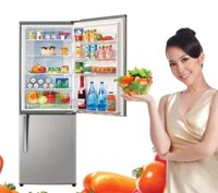 So sánh tủ lạnh Sanyo SR-Q345RB và Panasonic NR-BU303MS