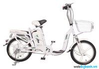 So sánh xe đạp điện Giant Momentum M133 và xe đạp điện HK Bike Zinger Extra