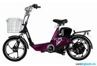 So sánh xe đạp điện Bridgestone NLI 16 và Yamaha Icats H3